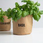 Brown Paper Herb Pots