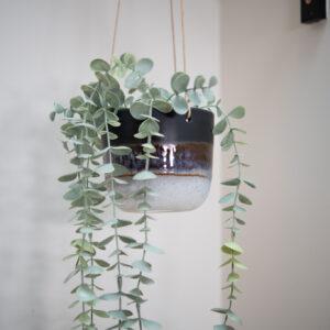 Black Ombre Hanging Planter